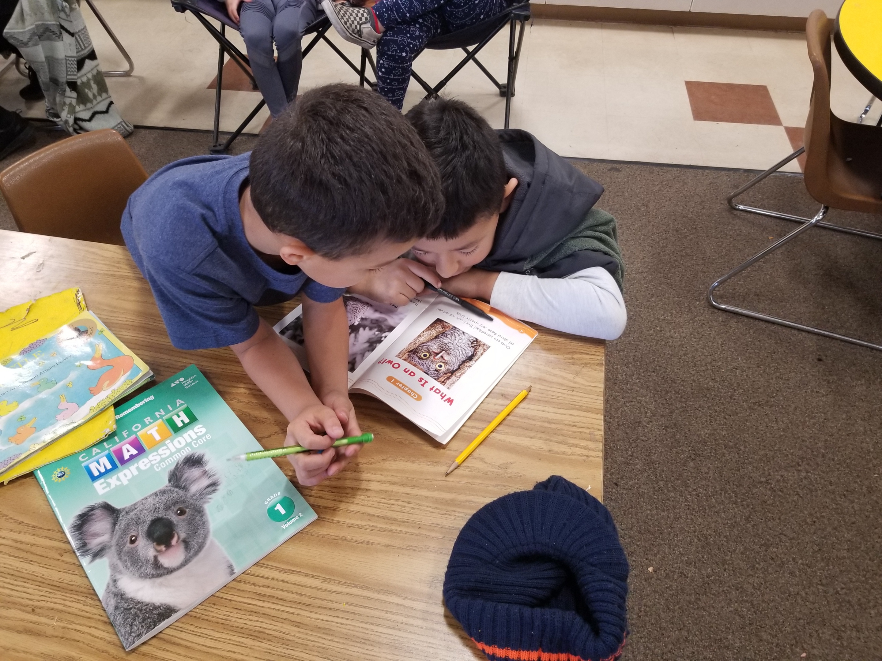 peer support in literacy